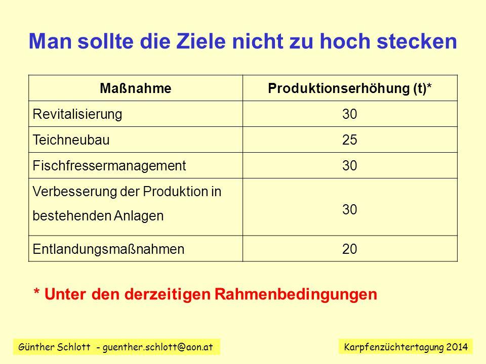 Man sollte die Ziele nicht zu hoch stecken Produktionserhöhung (t)*