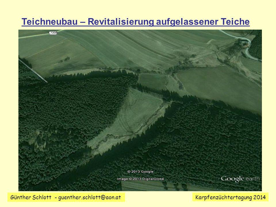 Teichneubau – Revitalisierung aufgelassener Teiche