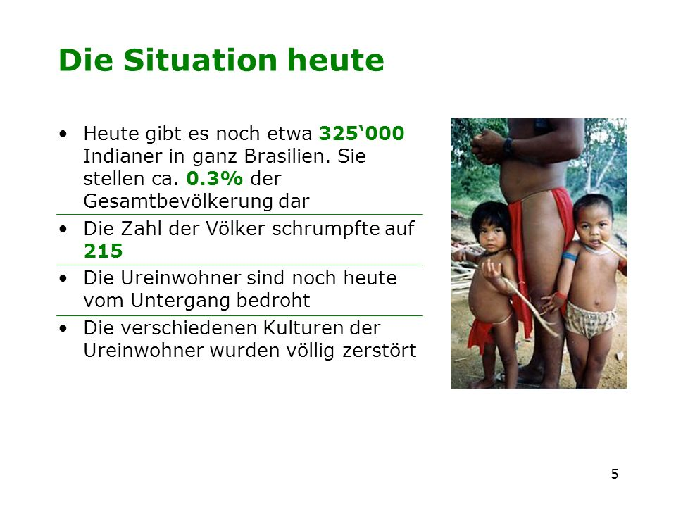 Die Situation heute Heute gibt es noch etwa 325'000 Indianer in ganz Brasilien. Sie stellen ca. 0.3% der Gesamtbevölkerung dar.