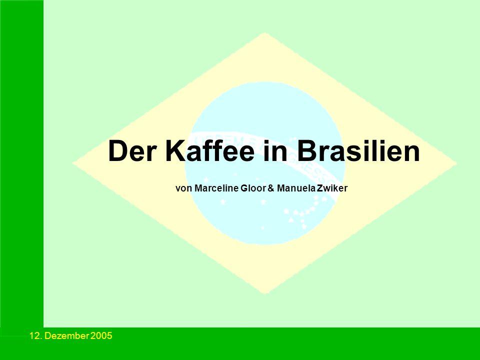 Der Kaffee in Brasilien