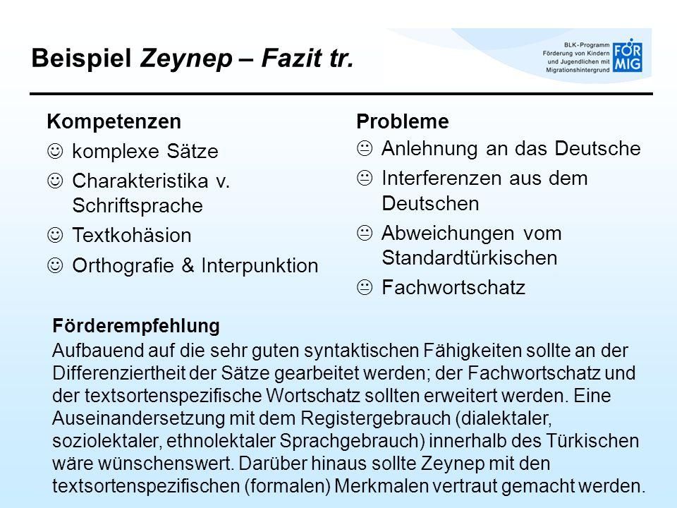 Beispiel Zeynep – Fazit tr.