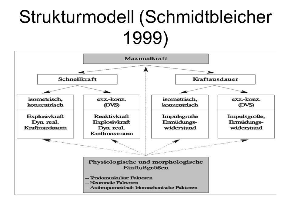 Strukturmodell (Schmidtbleicher 1999)