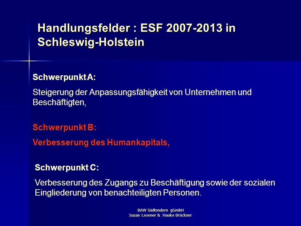 Handlungsfelder : ESF 2007-2013 in Schleswig-Holstein