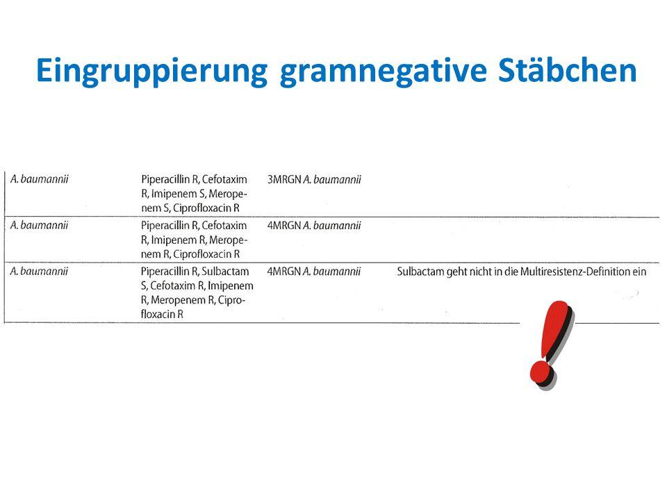 Eingruppierung gramnegative Stäbchen