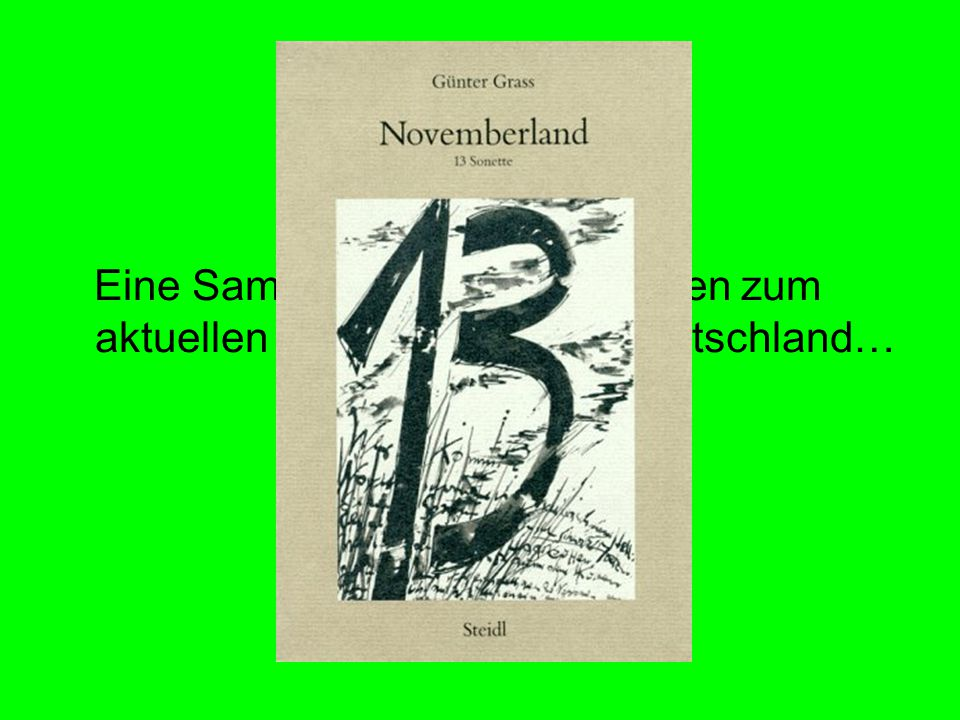 Novemberland Eine Sammlung vom 13 Sonetten zum aktuellen Zeitgeschehen in Deutschland…