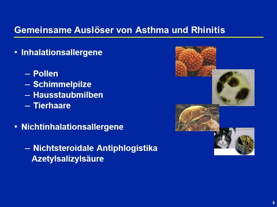 Gemeinsame Auslöser von Asthma und Rhinitis