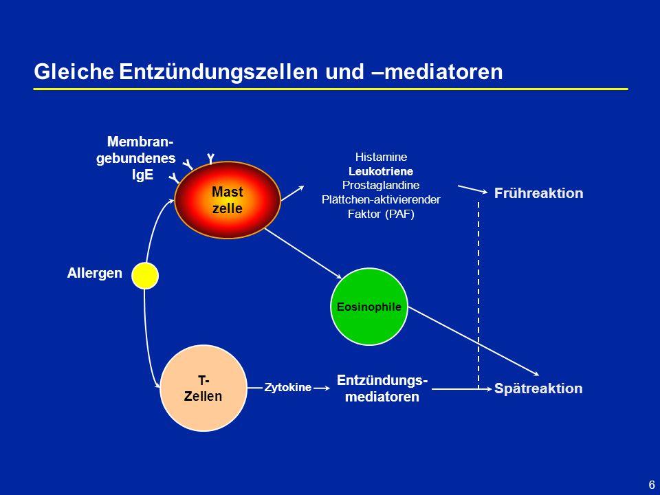 Gleiche Entzündungszellen und –mediatoren