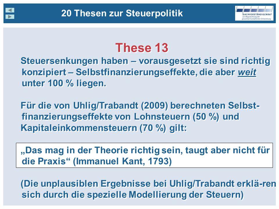 These 13 20 Thesen zur Steuerpolitik