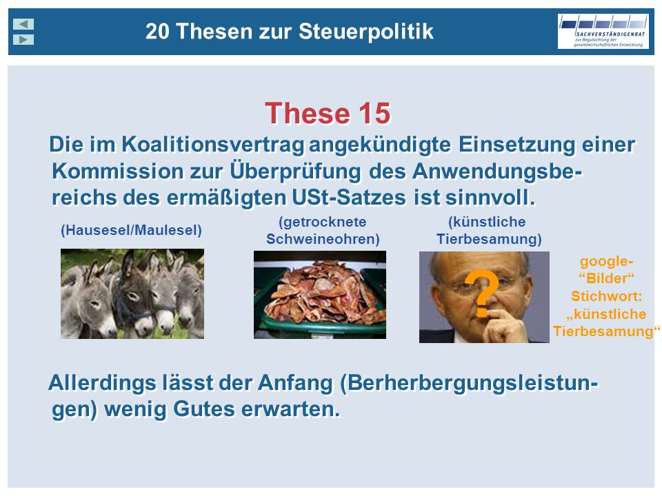 These 15 20 Thesen zur Steuerpolitik