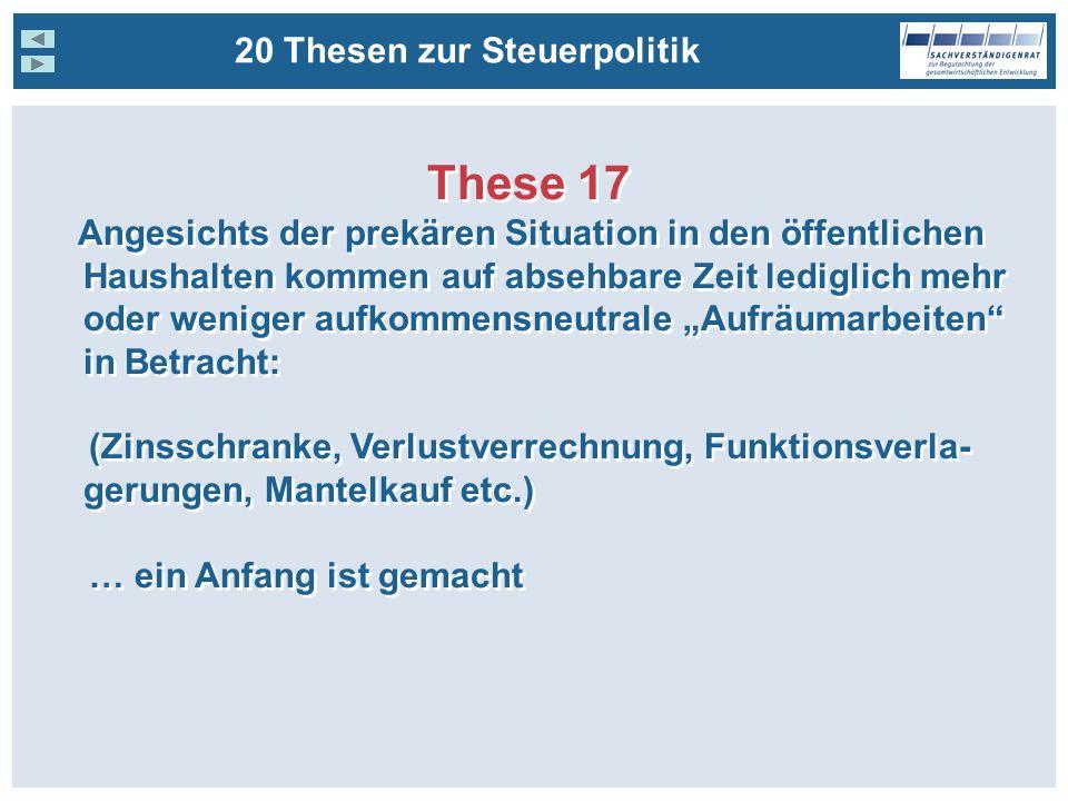 These 17 20 Thesen zur Steuerpolitik