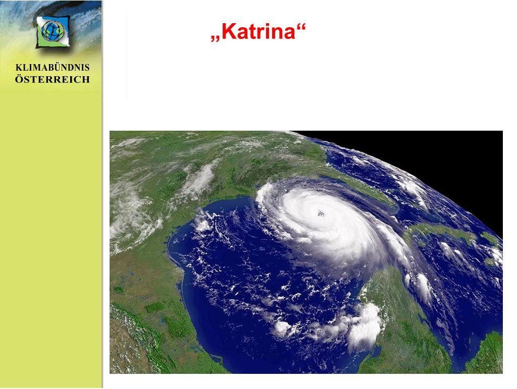 """""""Katrina"""