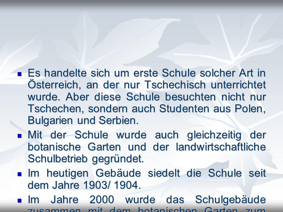 Es handelte sich um erste Schule solcher Art in Österreich, an der nur Tschechisch unterrichtet wurde. Aber diese Schule besuchten nicht nur Tschechen, sondern auch Studenten aus Polen, Bulgarien und Serbien.