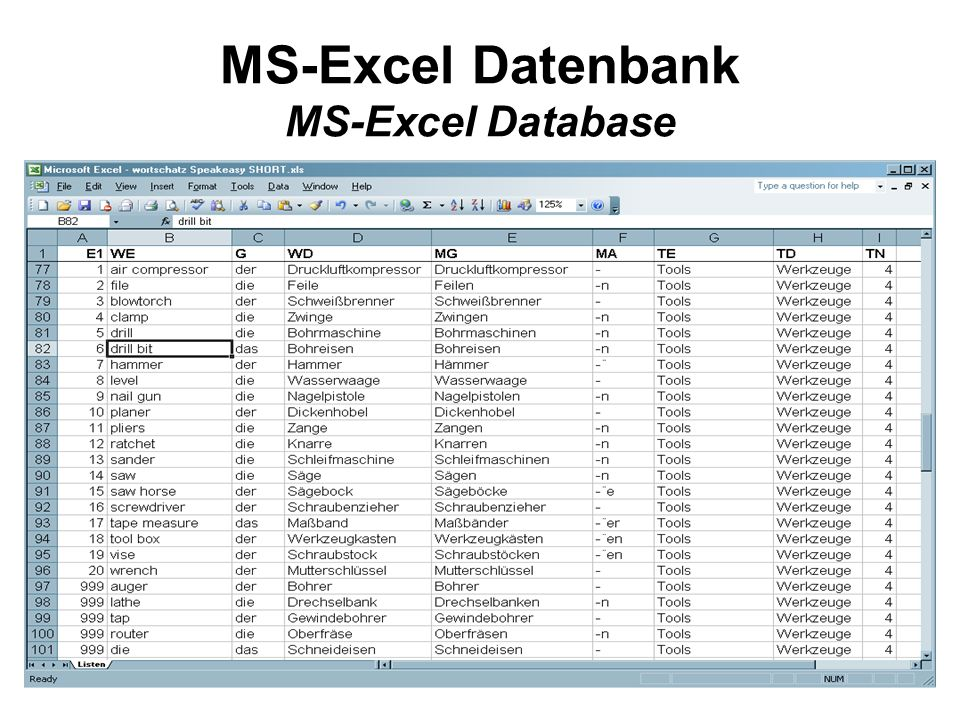 MS-Excel Datenbank MS-Excel Database