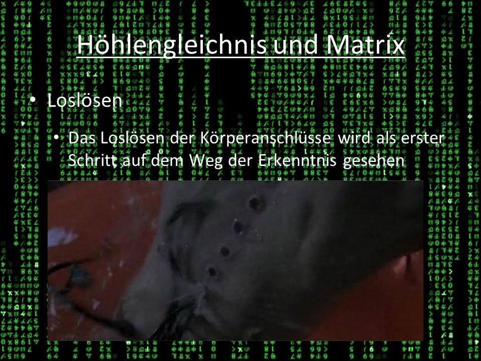 Höhlengleichnis und Matrix