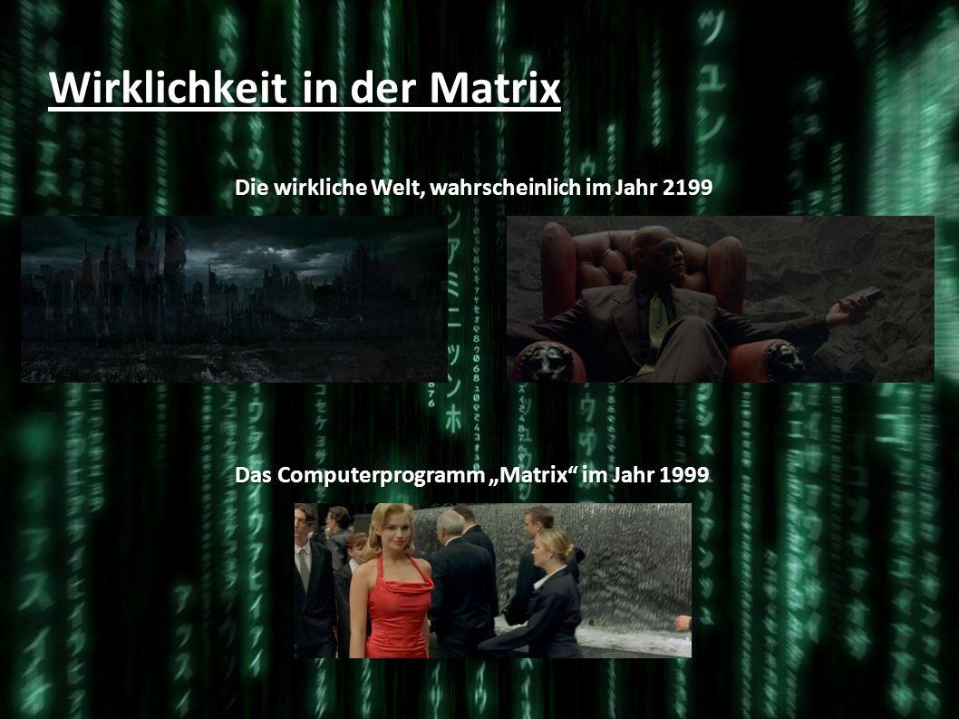 Wirklichkeit in der Matrix