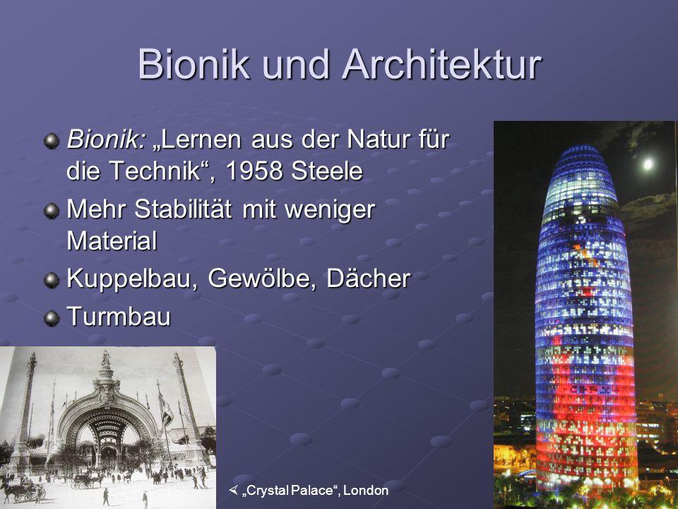 Bionik und Architektur