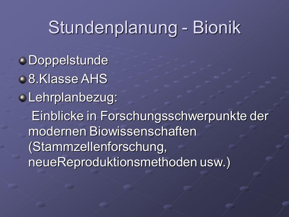 Stundenplanung - Bionik