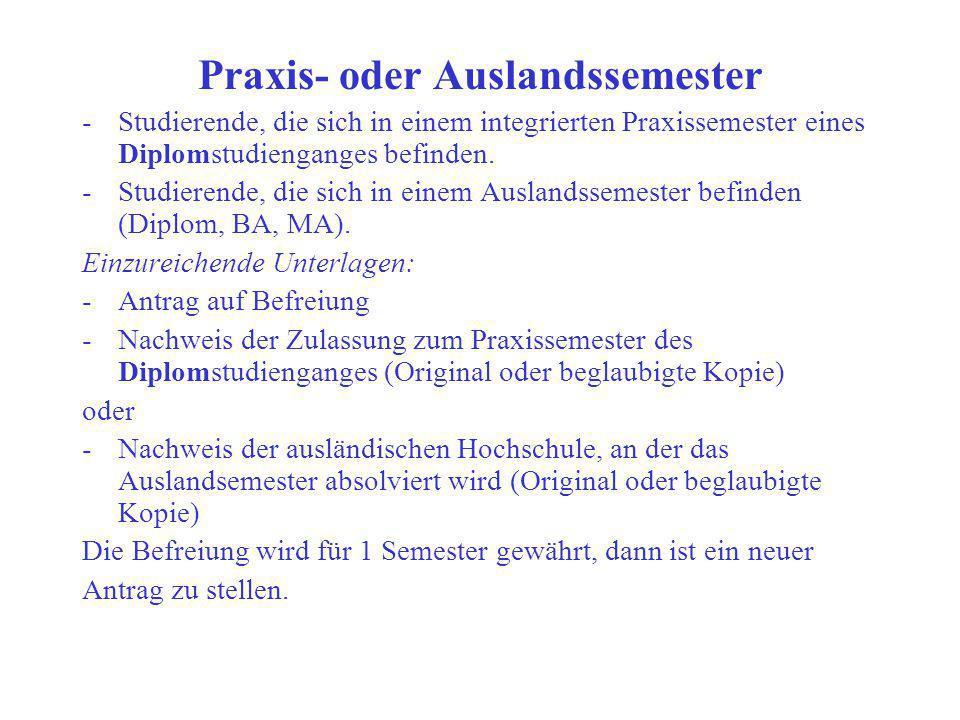 Praxis- oder Auslandssemester
