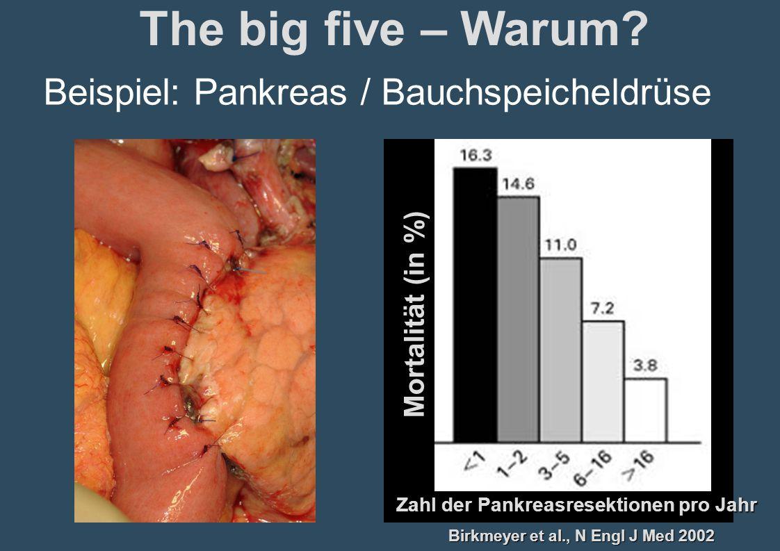 The big five – Warum Beispiel: Pankreas / Bauchspeicheldrüse