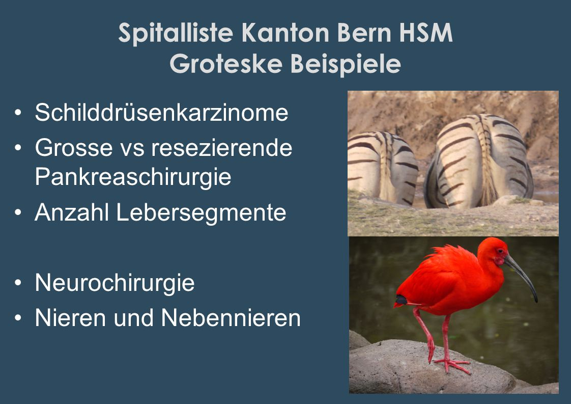 Spitalliste Kanton Bern HSM Groteske Beispiele