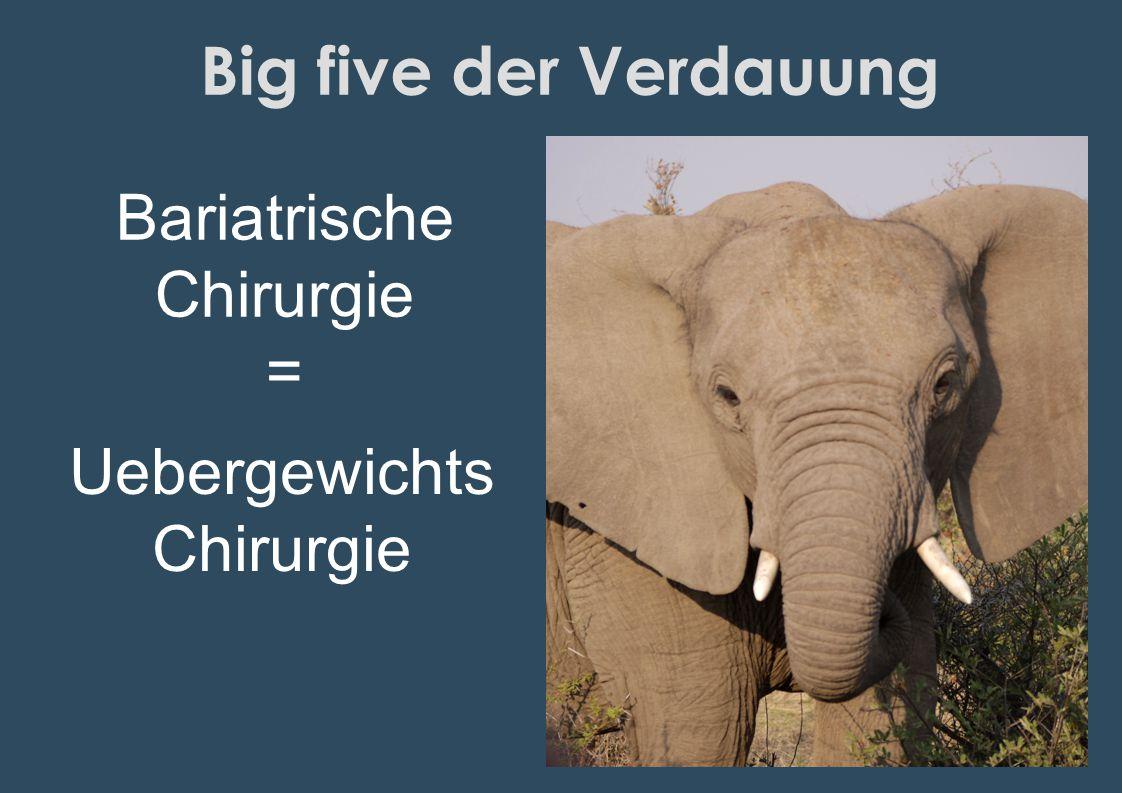 Big five der Verdauung Bariatrische Chirurgie = Uebergewichts