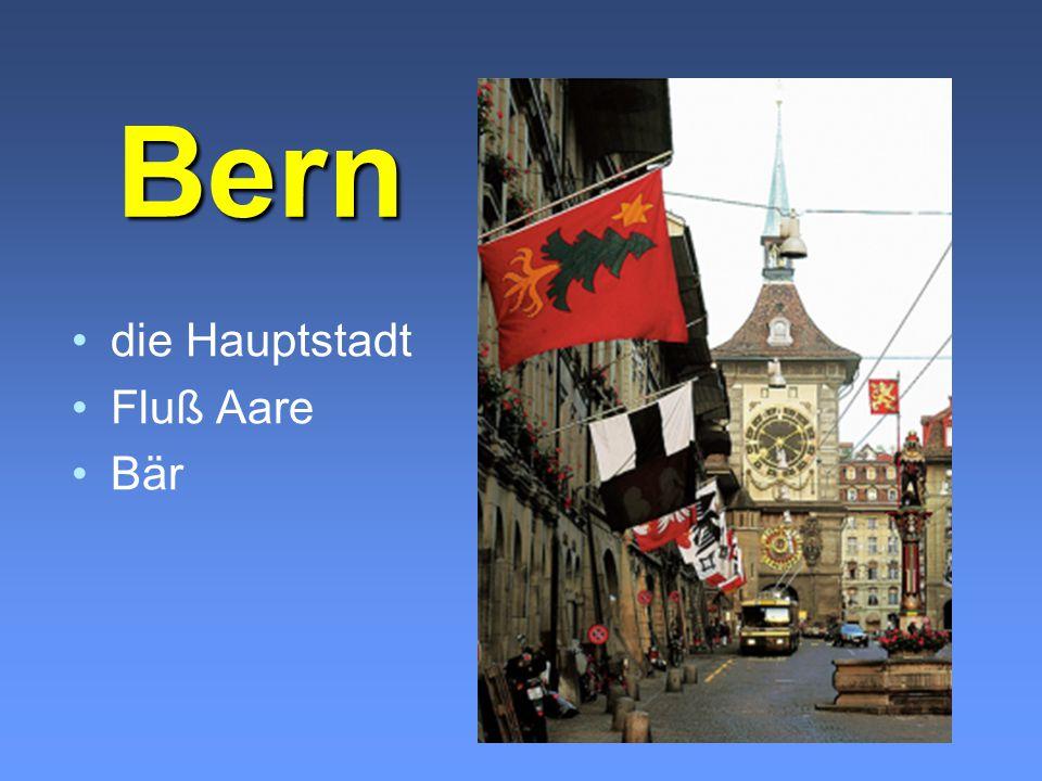 Bern die Hauptstadt Fluß Aare Bär