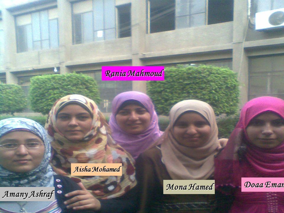 Rania Mahmoud Doaa Emam Mona Hamed Amany Ashraf