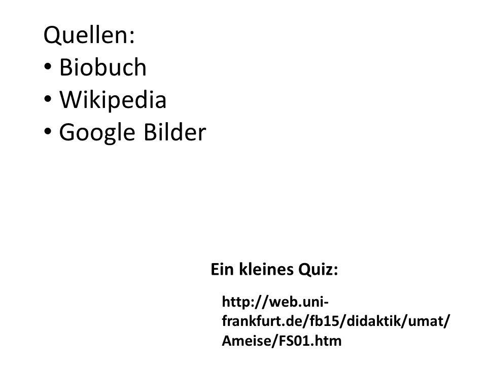 Quellen: Biobuch Wikipedia Google Bilder Ein kleines Quiz: