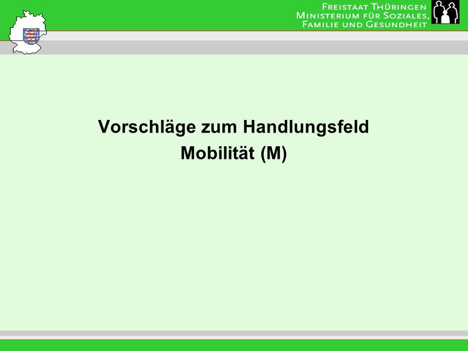 Vorschläge zum Handlungsfeld Mobilität (M)