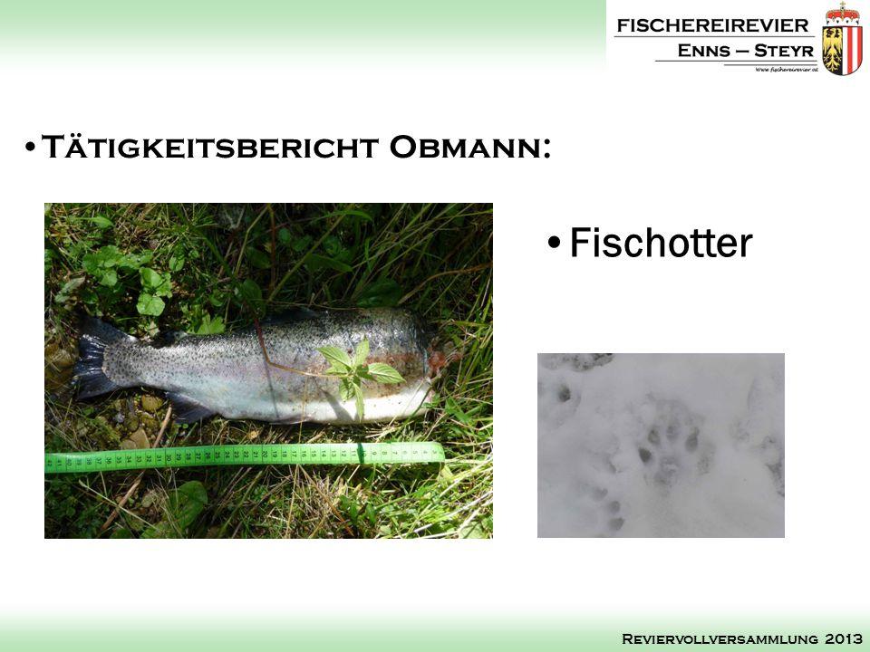 Tätigkeitsbericht Obmann: