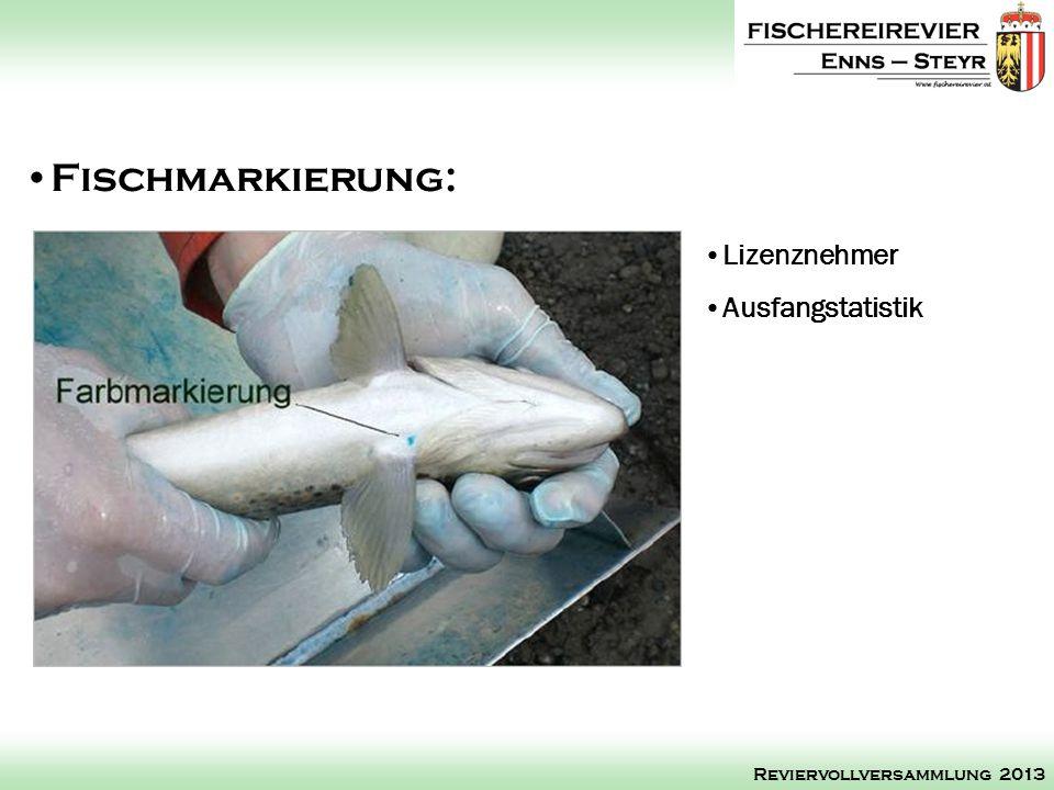 Fischmarkierung: Lizenznehmer Ausfangstatistik