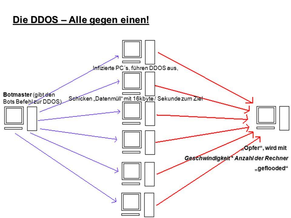 Die DDOS – Alle gegen einen!