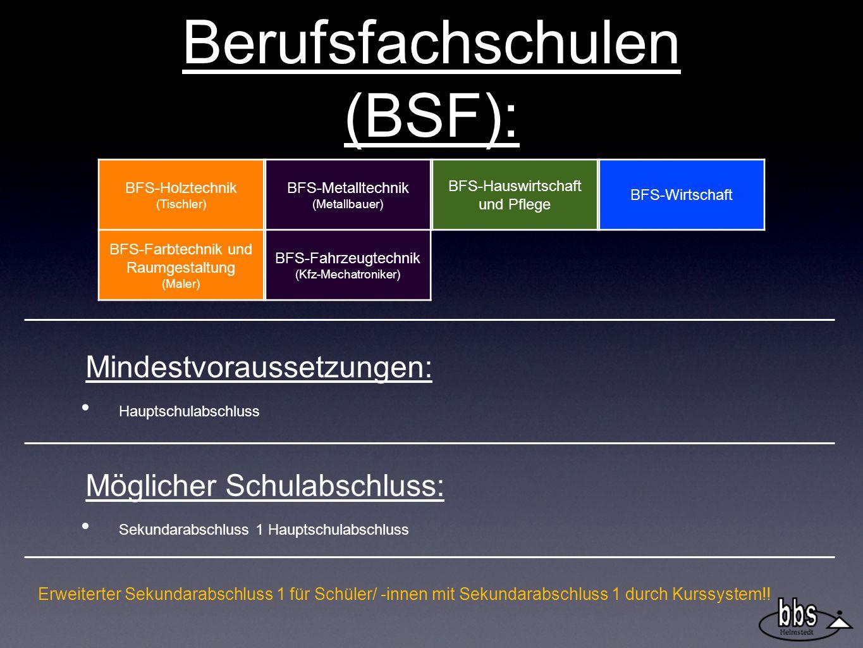 Berufsfachschulen (BSF):