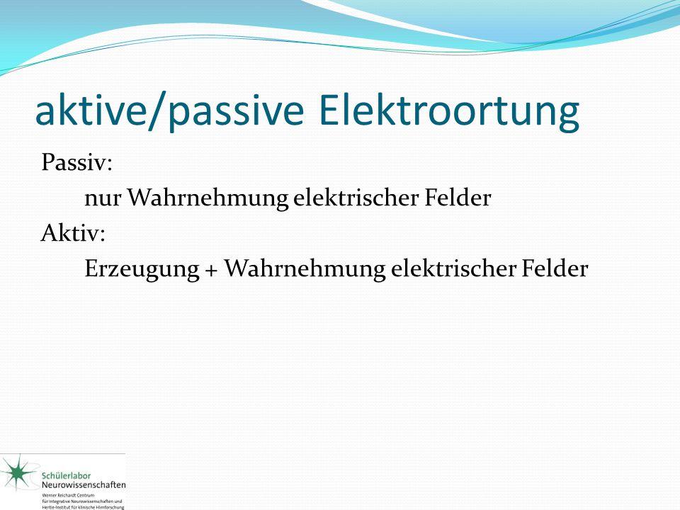 aktive/passive Elektroortung