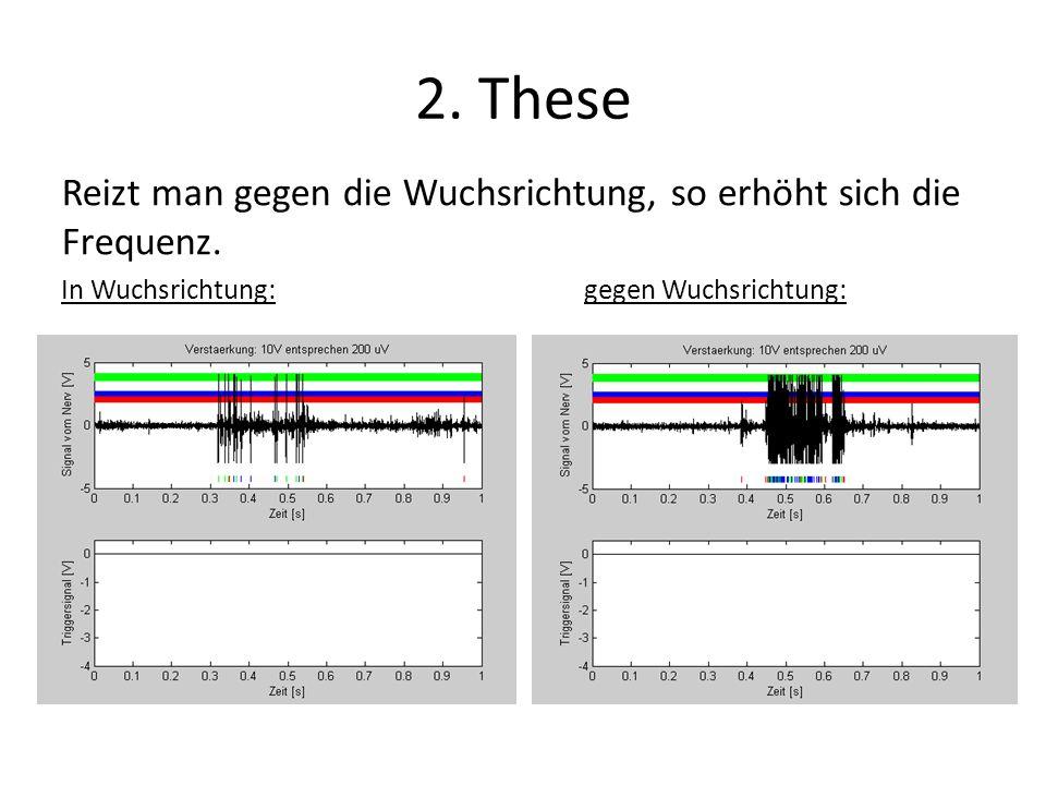 2. These Reizt man gegen die Wuchsrichtung, so erhöht sich die Frequenz.