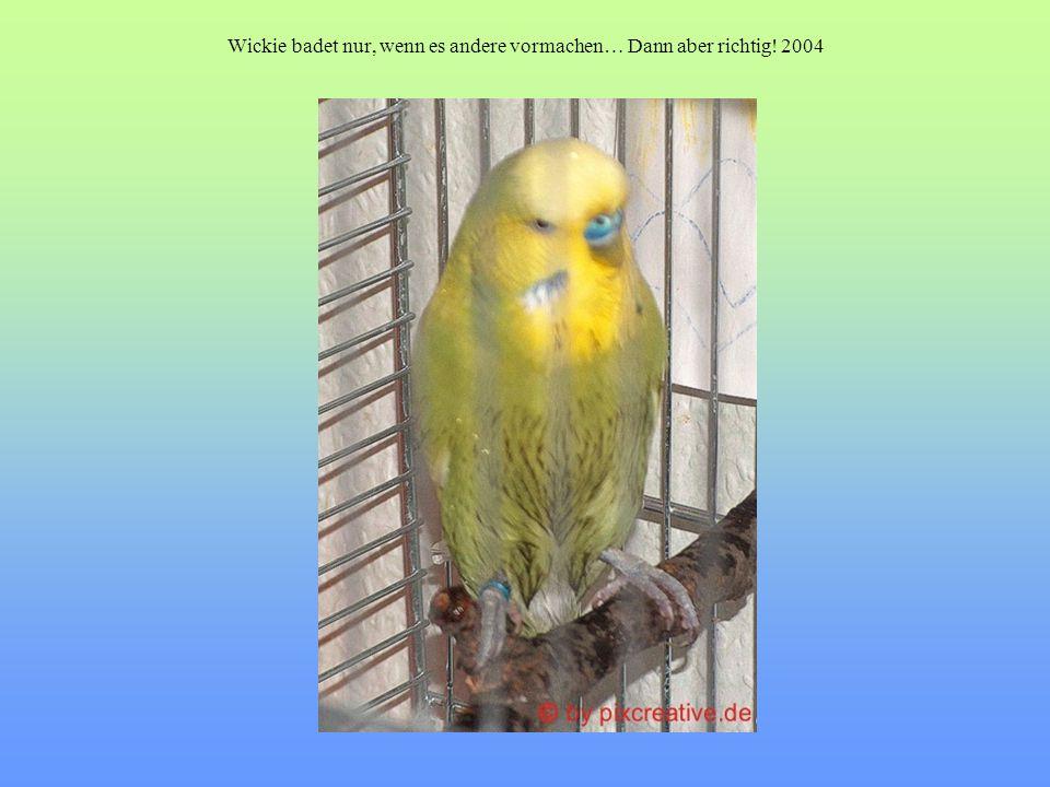 Wickie badet nur, wenn es andere vormachen… Dann aber richtig! 2004