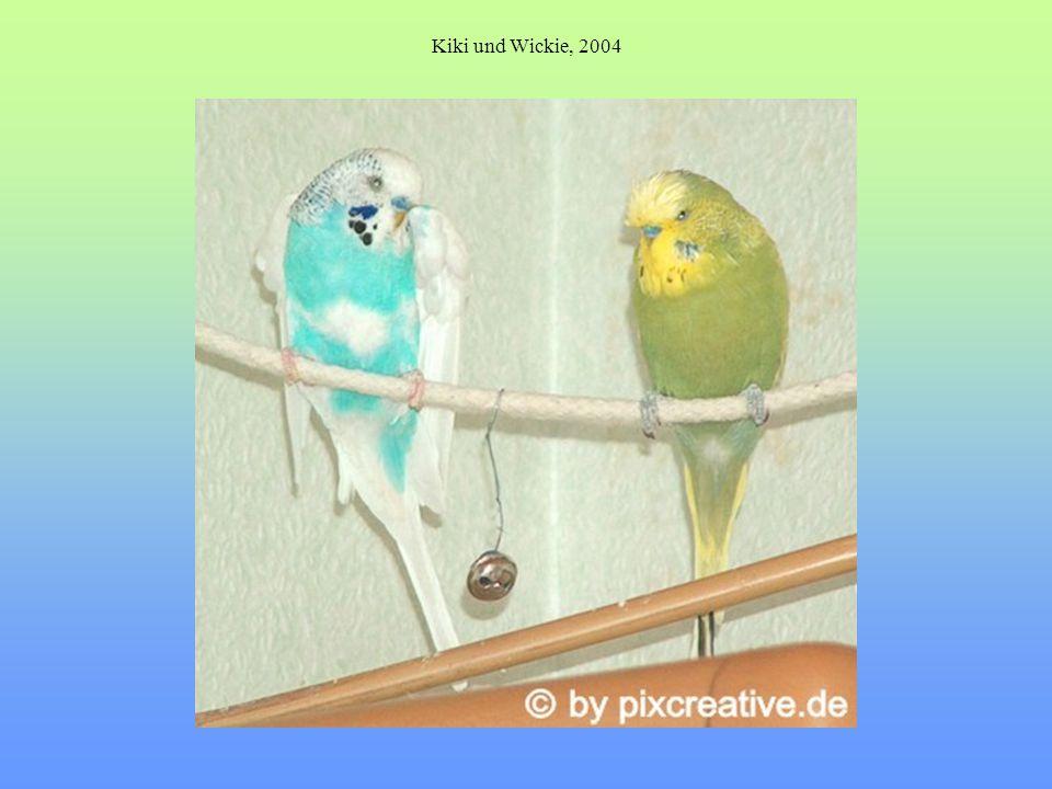 Kiki und Wickie, 2004