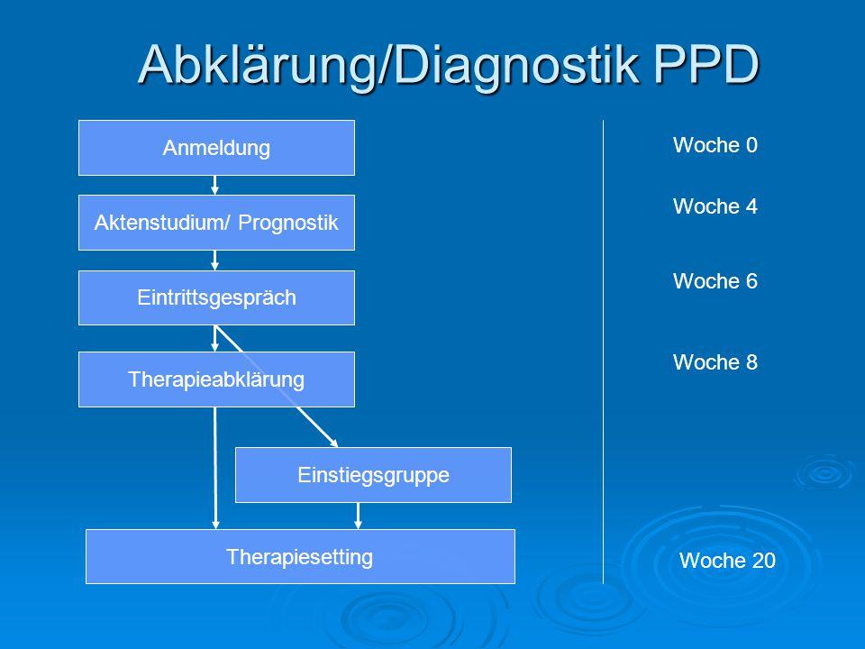 Abklärung/Diagnostik PPD