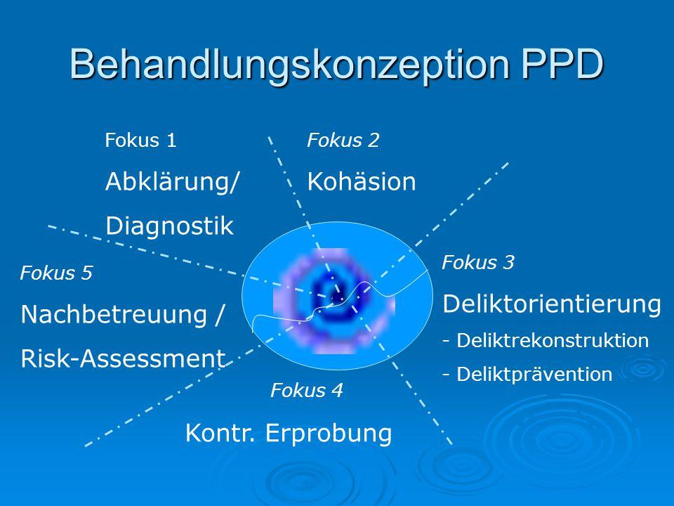 Behandlungskonzeption PPD