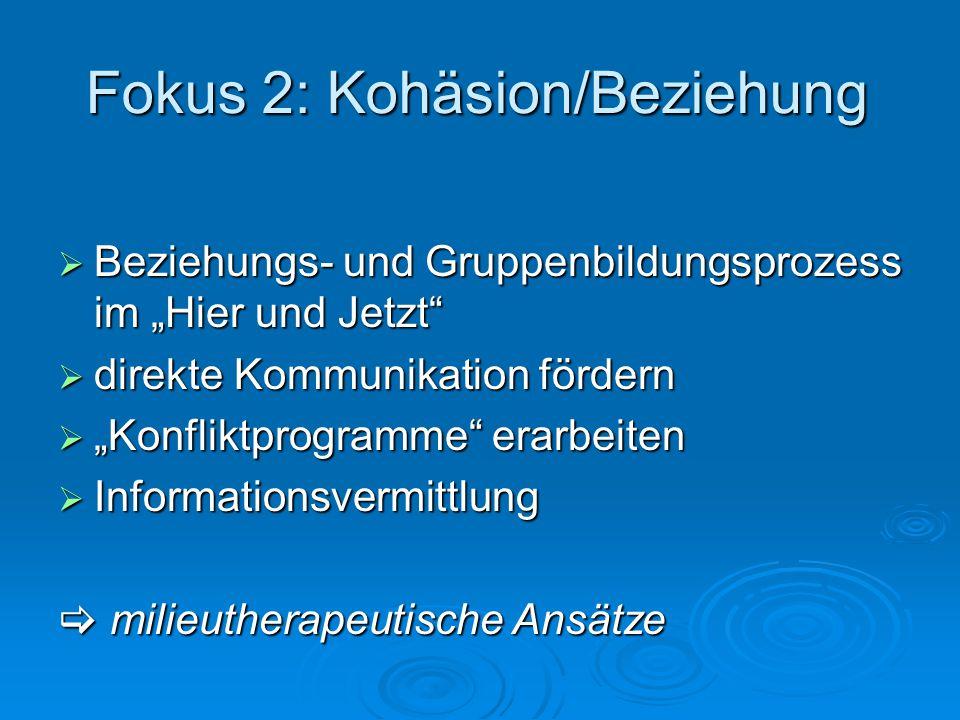 Fokus 2: Kohäsion/Beziehung