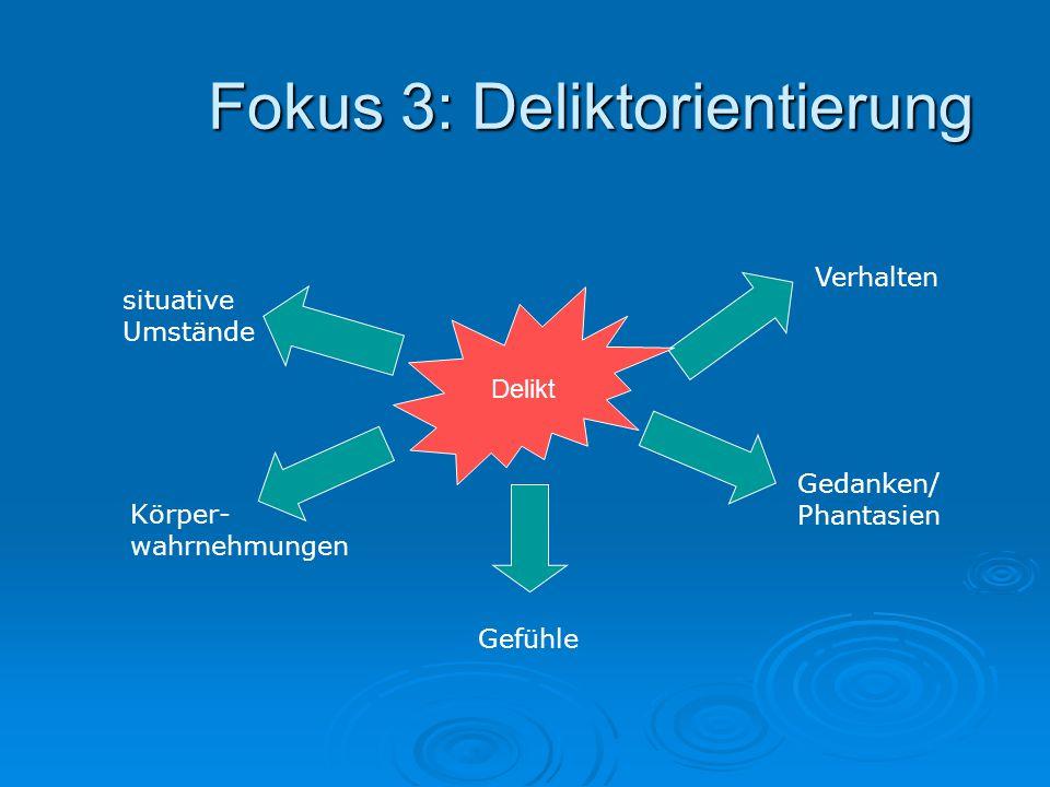 Fokus 3: Deliktorientierung