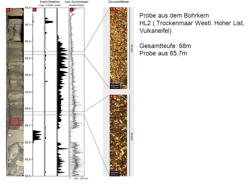 Probe aus dem Bohrkern HL2 ( Trockenmaar Westl. Hoher List, Vulkaneifel) Gesamtteufe: 68m.