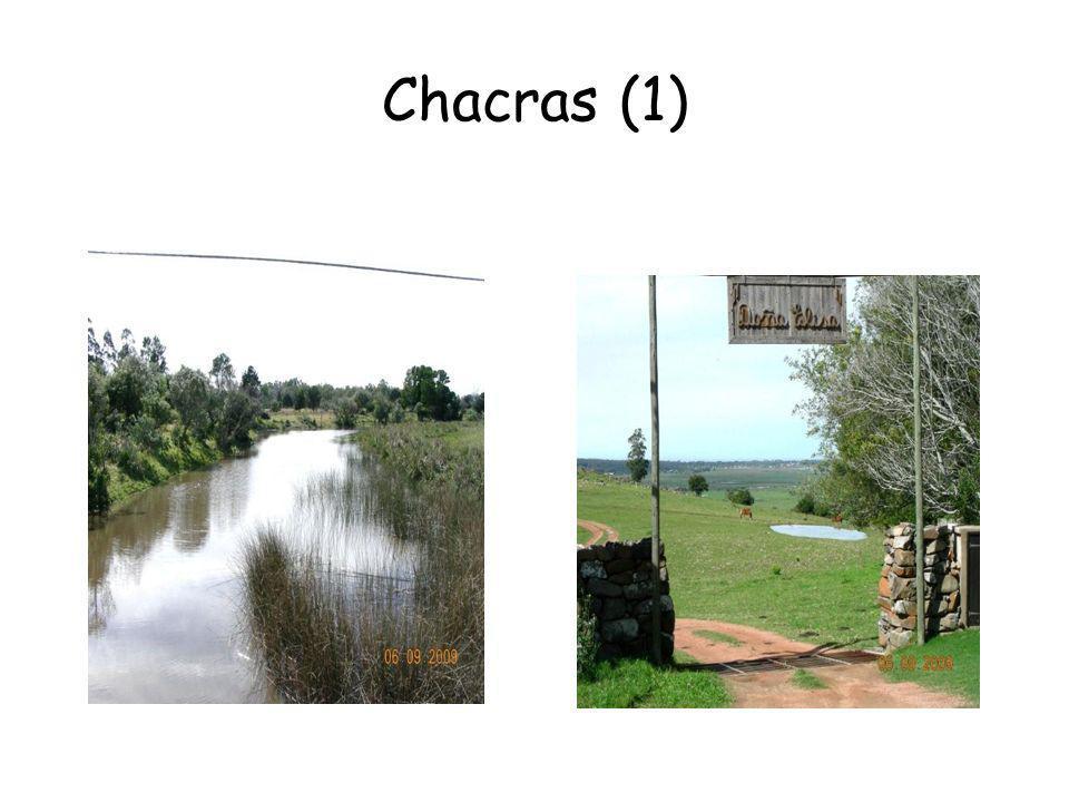 Chacras (1)