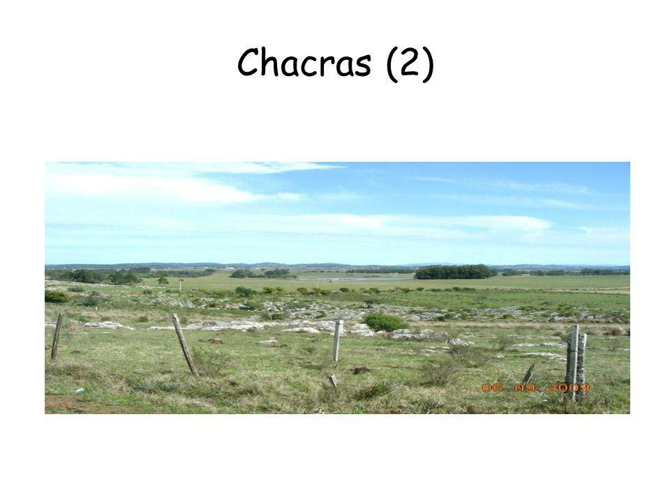 Chacras (2)