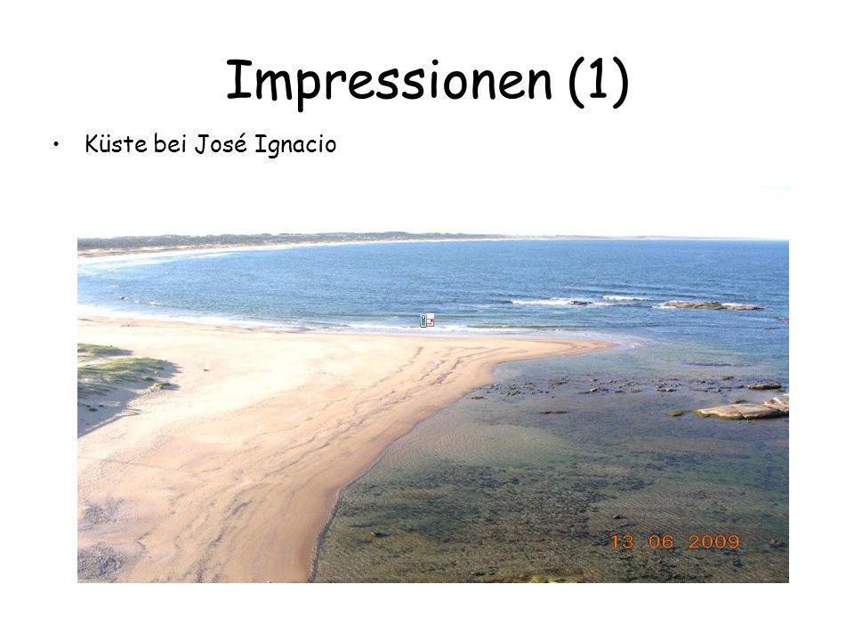 Impressionen (1) Küste bei José Ignacio