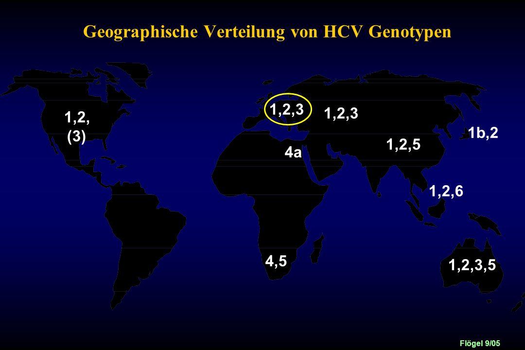 Geographische Verteilung von HCV Genotypen
