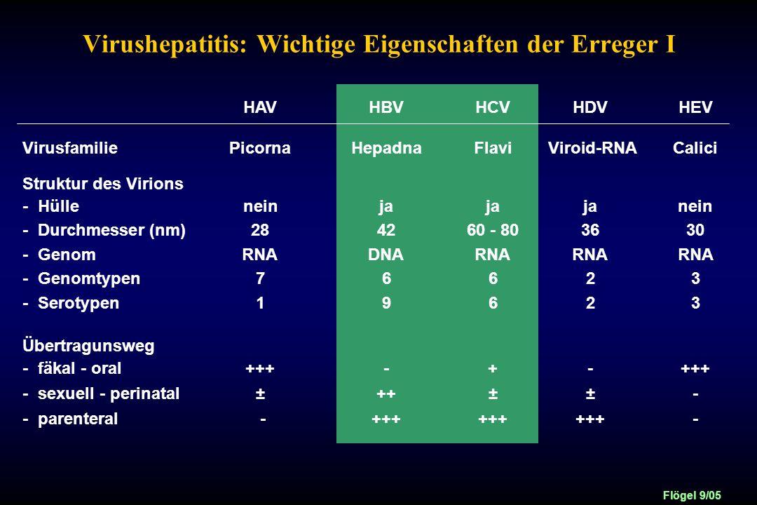 Virushepatitis: Wichtige Eigenschaften der Erreger I