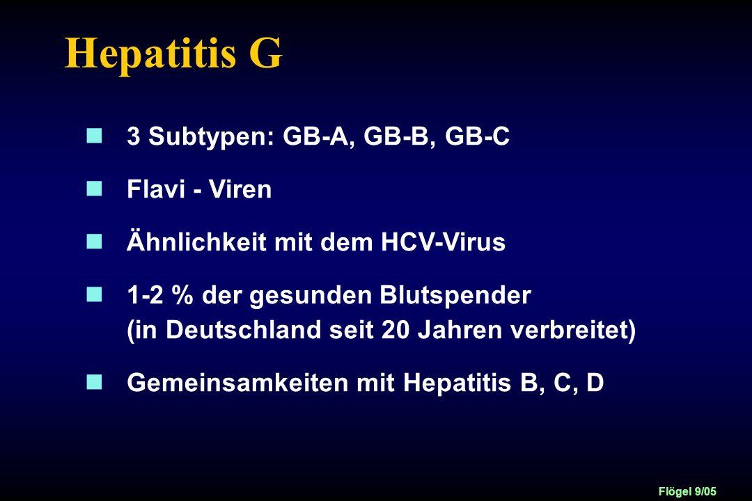 Hepatitis G 3 Subtypen: GB-A, GB-B, GB-C Flavi - Viren