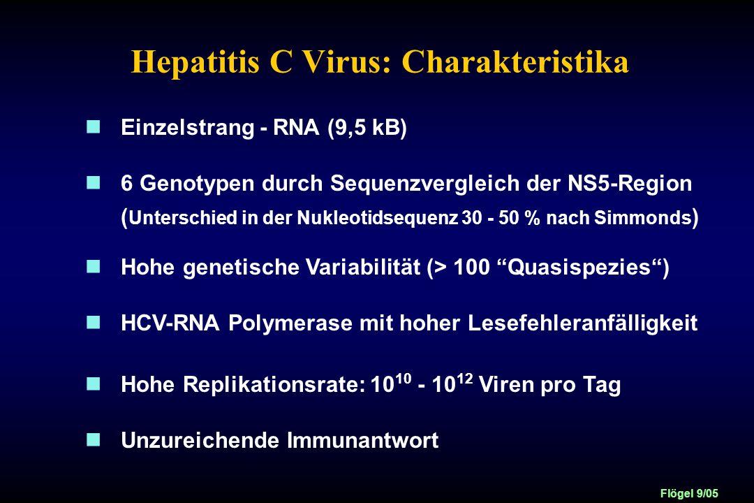 Hepatitis C Virus: Charakteristika