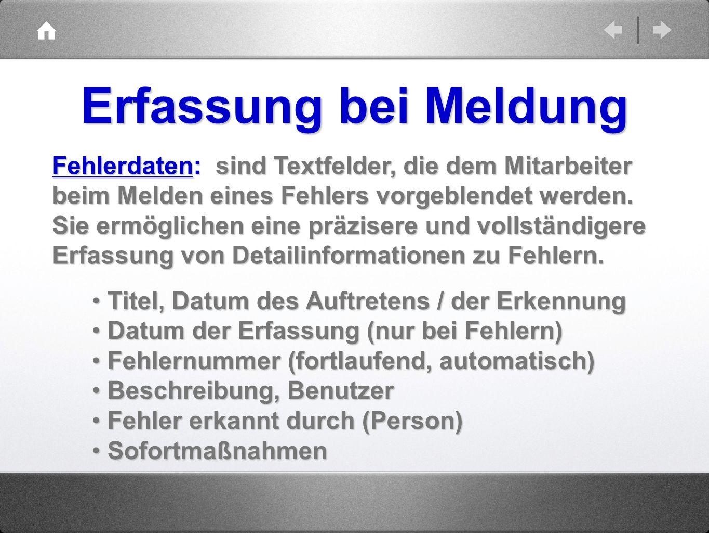 Erfassung bei Meldung Fehlerdaten: sind Textfelder, die dem Mitarbeiter. beim Melden eines Fehlers vorgeblendet werden.
